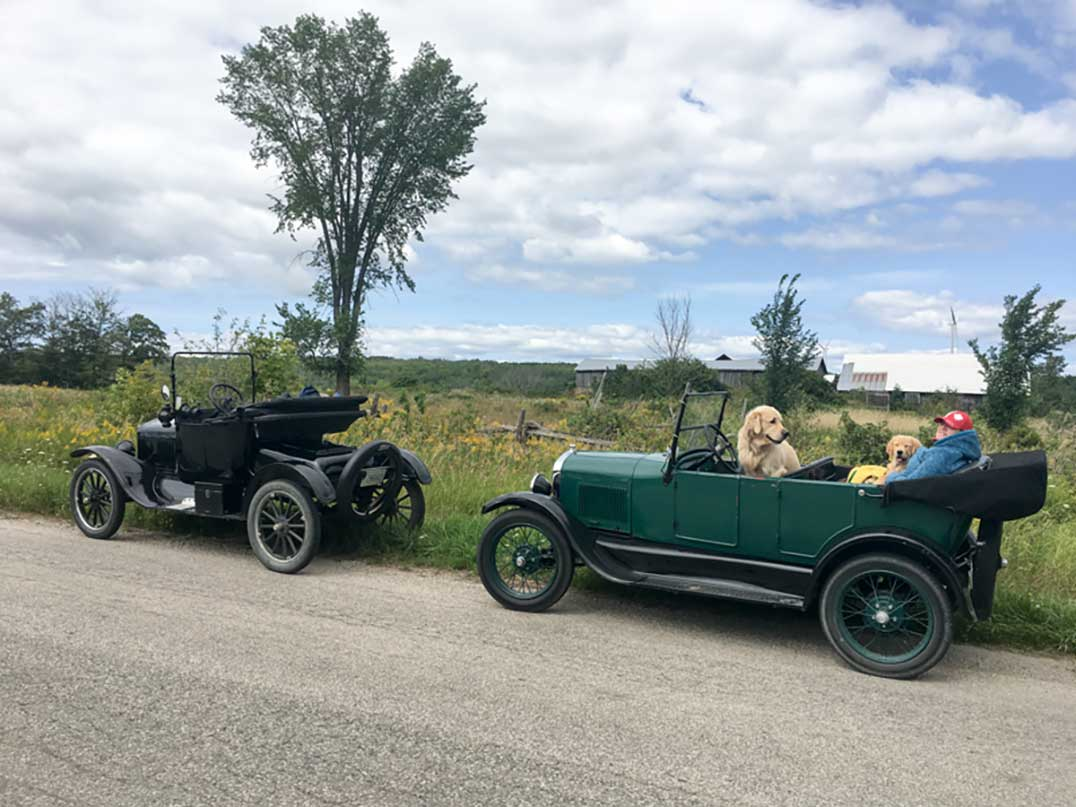 Classic-Cars-alapacas-1