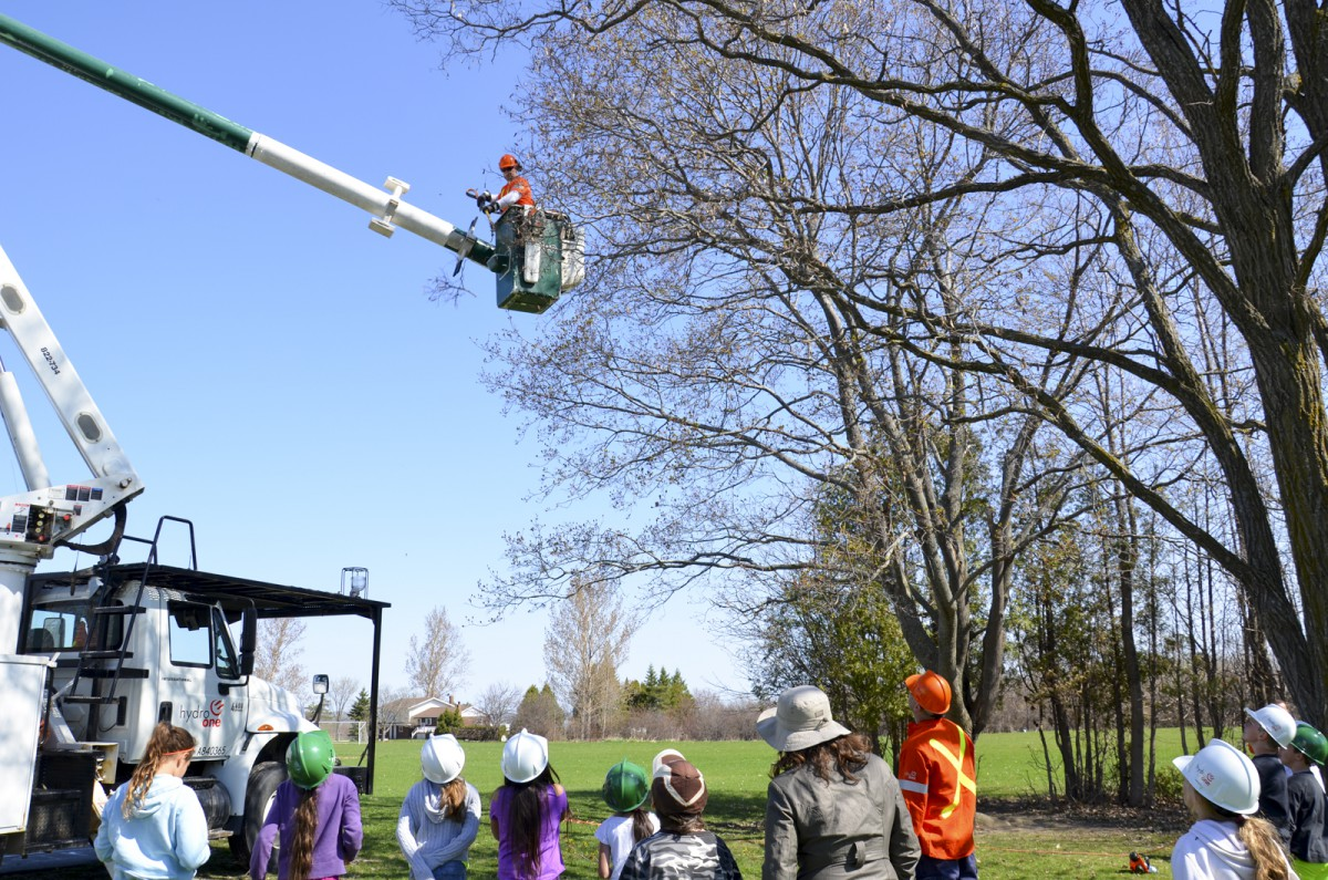 Forestry tech Chris Valley clips branches during a Hydro One Arbour Day presentation.
