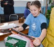 Grade 6 Lakeview School student Darci Debassige tries the fleshing machine  showing that anyone, regardless of strength or skill, can use the new invention.